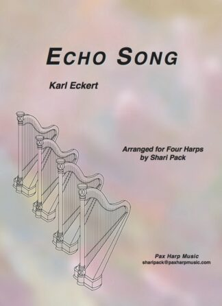 Echo Song Cover